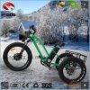 Aluminum Alloy Bike Fat Tire Electric Tricycle with Suspension