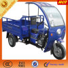 Cargo Three Wheeler Motor