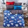 4 PCS 6 PCS Printed Bedding Quilt Covers