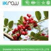 Food Grade Prickly Ash Extract Zanthoxylum Oil Oleoresin with High Quality