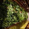 Amusement Park Office Decoration Artificial Green Plant Wall