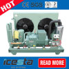 Most Popular Bitzer Compressor Condensing Unit Ce