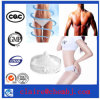 Supplying Fast Slimming Loss Weight Drug Rimonabant Hydrochloride CAS: 158681-13-1