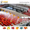 Complete Automatic Tomato Paste Sauce Ketchup Machine Production Processing Line