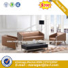 Modern Leisure Sofa Wooden Frame Hotel Sofa (HX-S272)