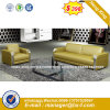 Wooden Classic Living Room Modern Sofa (HX-S167)