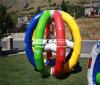 Cheer Amusement Air Cage CH-Ap-20150112-1