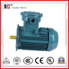 AC Asynchronous Explosion Proof Motor with High Speed