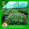 Hot Sale Agricultural Shade Green Net for Greenhouse
