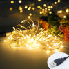 Garden Decoration Copper Wire 2m 20LEDs 10m 100LEDs USB String Light