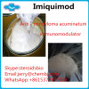 Pharmaceutical Grade Imiquimod Powder for Local Inflammatory