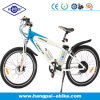 250W 36V Lithium Battery Motor Mountain Electric Bike (HP-E008)