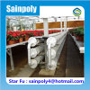 Multi-Span Plastic Film Greenhouse for Strawberry Growing