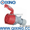 Economic Type Industrial Socket by Cee 60309 Standard (QX-6)