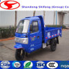 Diesel Cargo Three Wheel Truck for Sale From China