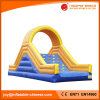 2018 Giant Inflatable Dry Slide for Amusement Park (T4-701)