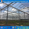 Glass Insulated Tempedred Glass Greenhouse