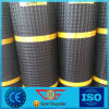 Hill Slope Reinforcement Polyester Geogrid