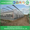 Multi Span Film Green House