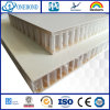 Fiberglass Reinforced Plastics PP Honeycomb Core Panel for Vehicle  Construction