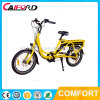 20 Inch New Green Power Adult Electric Cargo Bike with Lithium Battery Double Disc Brake Electric Bicycle