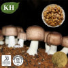 Agaricus Blazei Extract: Polysaccharides 30%, 40% by UV