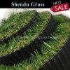 Vietnam Market Single Back Cheap Price 20mm Fake Grass Carpet