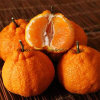 Premium Happiness Spring Mandarin Orange for Export