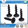 Steel Bugle Head Phillips Drywall Screw