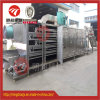 Hot Air Beef Jerky Multistage Belt Drying Machine for Sale