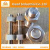 Stainless Steel B8 B8m Bolts with Hex Nuts