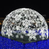 LED Programmable Large Scale Outdoor Christmas Lighting Show