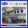 Blast Freezer for Fish and Chicken with Competitive Price