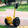 Biggest Promotion Two Wheels Self Balancing Scooter Golf Trolley Golf Scooter