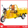New Designe Electric Tricycle for Adult