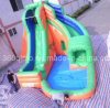 Inflatable Water Slide Toys with Pool (BMWL9)