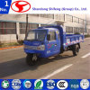 Adult Tricycle/Cargo Tricycle/Cargo Trike/China Tricycle Truck/Drift Trike/Gasoline Tricycle Car/Motor Tricycle Car/Motor Tricycle Rickshaw