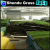 8800dtex Green Color 3/8inch Standard Guage Artificial Lawn 30mm