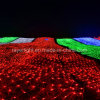 5m*3m Holiday Waterproof Colored LED Net Lights