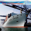 Sea Shipping, Warehouse Storage, Customs Declaration, Shipping Agent.