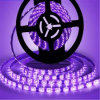 Purple UVA UV C Germicidal Purple LED Light Strip Stripes Tape Strips Light