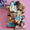SGS Soft and Cozy Men's Coral Fleece Bath Towel Bath Robe (WJ-B962)
