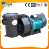 Best Quality Aqua Brand Swimming Pool Pump