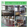 Good 12mm Raw Particleboard Material for Making Shoe Cabinet