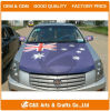 Decorative Car Engine Hood Cover