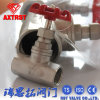 200psi Stainless Steel Female Globe Valve
