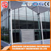 Commercial Multi-Span Garden Toughened Glass Greenhouse/Vegetable