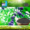 Kingeta Carbon Based Biological Organic Fertilizer Improve Soil Micro-Flora