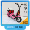 Kids Electric Bike 250W