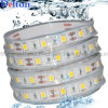 Waterproof CE Certificated Flexible LED Strip Light